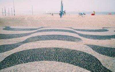 Dedetizadora em Copacabana – Rio de Janeiro