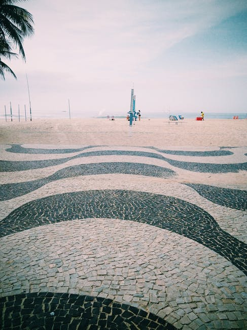 Dedetizadora em Copacabana - Rio de Janeiro