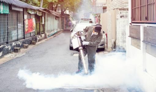 Dedetização de pragas urbanas em Queimados